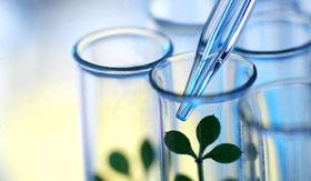 The Wonderful World of Science Blogging