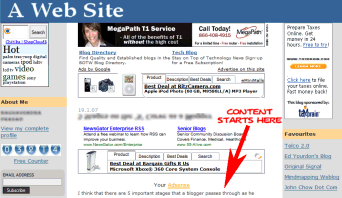 Example of a blog stuffed full of advertising