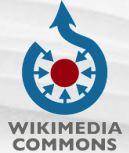 wikimedia-logo.jpg