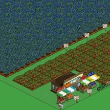 Real World Meets Farmville…Again! 310 Million Organic Blueberries Involved