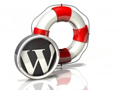 Rescue Icon: WordPress