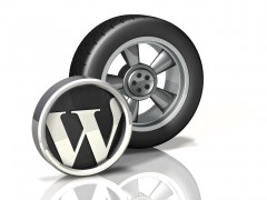 Wheel Icon: WordPress