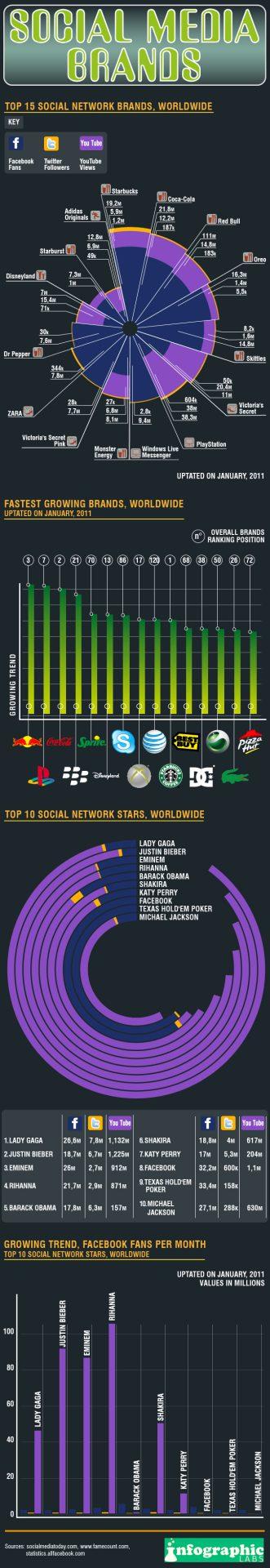 Top Social Media Brands: Infographic
