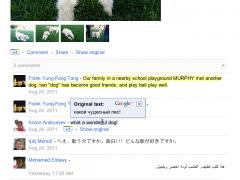 Google+ Translate