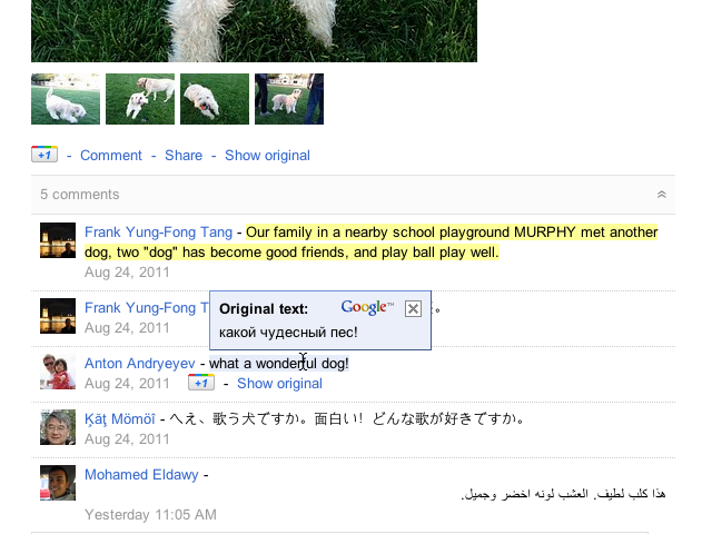 Chrome Extension Brings Google Translation To Google+ Posts And Comments