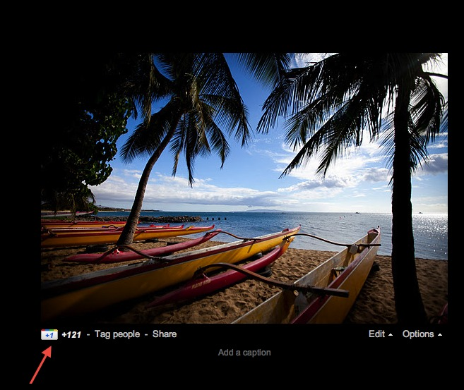 Google+ Adds +1 Sharing For Photos [User Requested Feature]