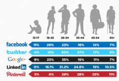 Social Network Demographics