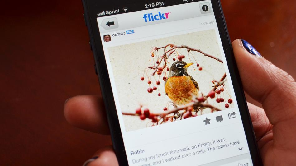 Flickr Adds Hashtags To iOS App