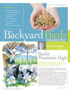 blog-post-ideas-bird-magazine