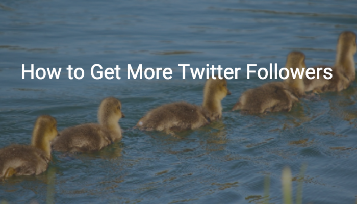 Back to the Basics: How to Get More Twitter Followers