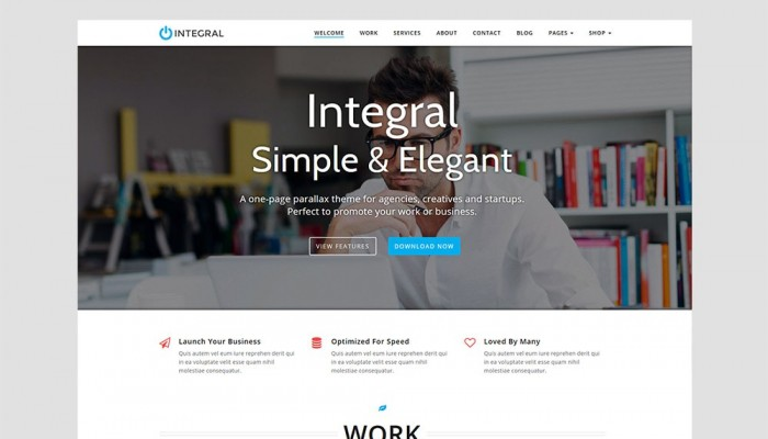 "Win the ""Integral"" WordPress Theme from Themely"