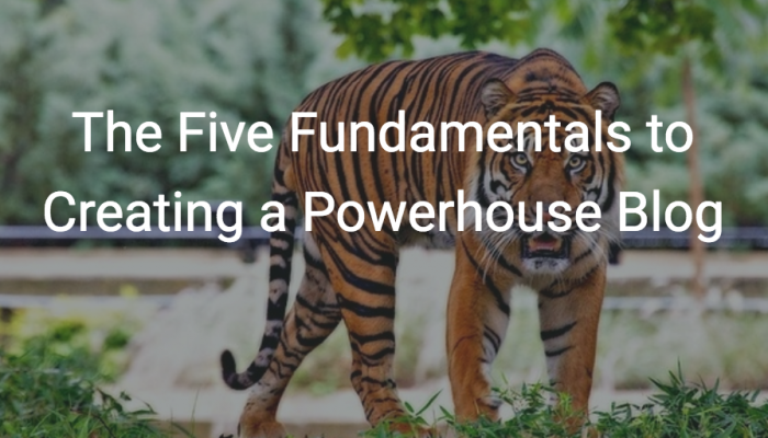 The Five Fundamentals to Creating a Powerhouse Blog