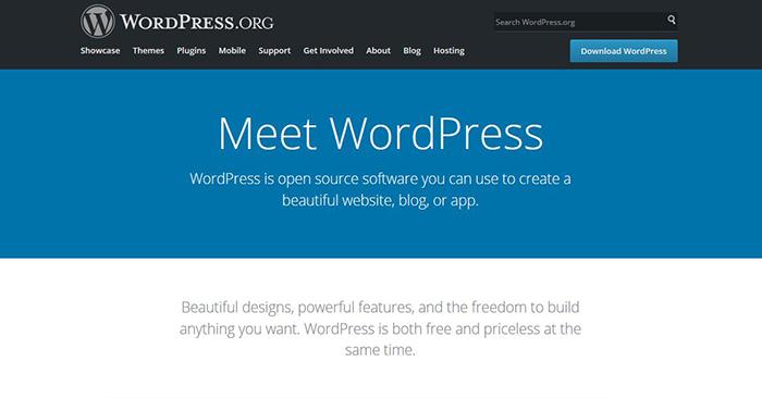 popular blog platform