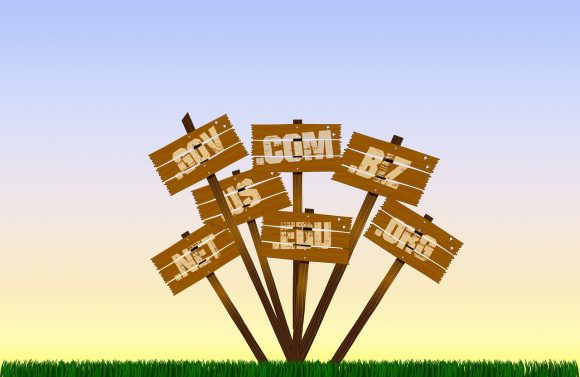 domain buying strategies