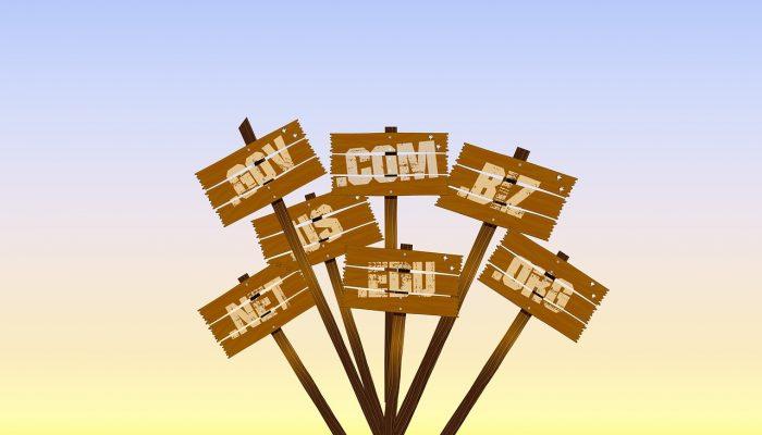 6 Domain Buying Strategies to Skyrocket Your Digital Revenues